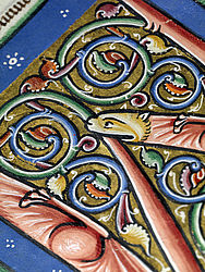 Initials with vines and an animal's head found in a manuscript containing juridical digests. Italy and Northern France, ca. 1170 | SBB, Msc.Jur.17, fol. 159v